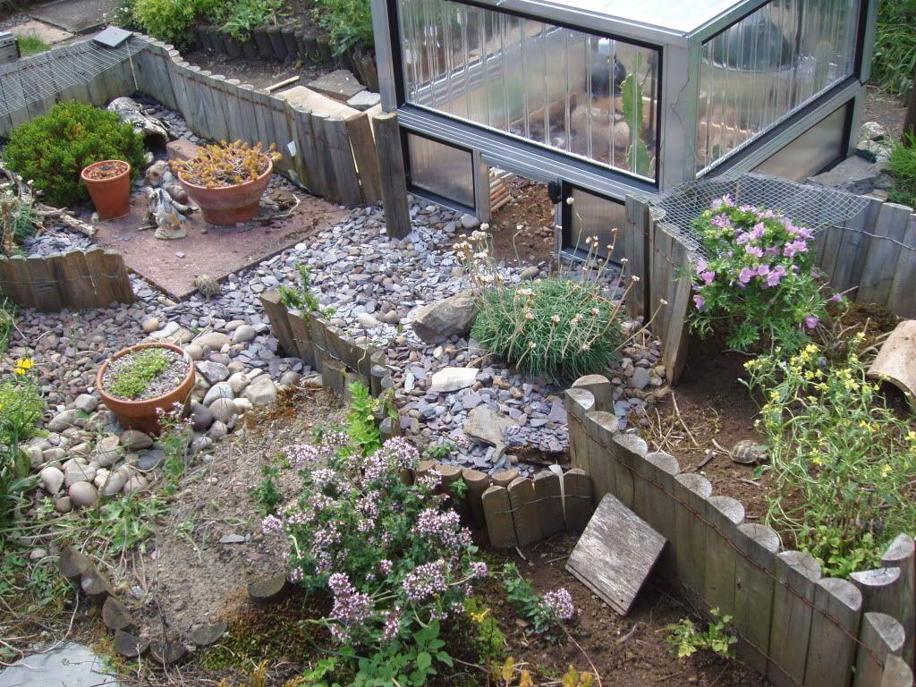 Outdoor habitat for tortoise plexiglass coldframe and for Habitat container