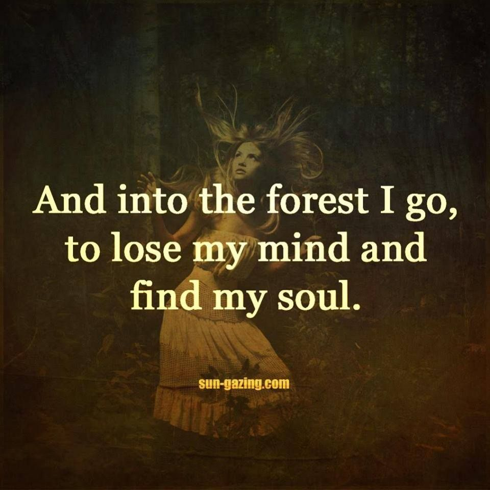 And Into The Forest I Go To Lose My Mind And Find My Soul With