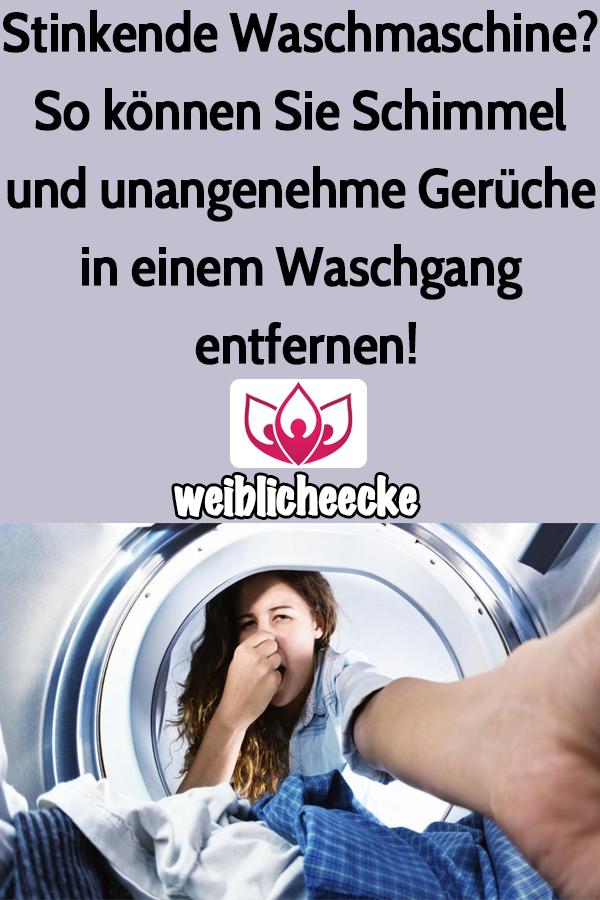 Stinkende Waschmaschine So Konnen Sie Schimmel Und Unangenehme