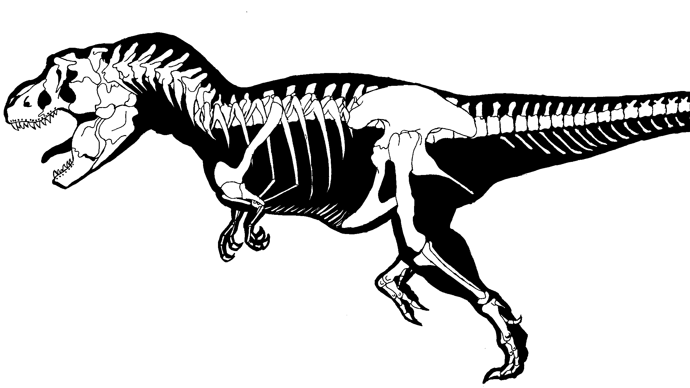 Pin On Dino Coloring