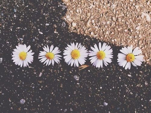 Tumblr Photography Hipster