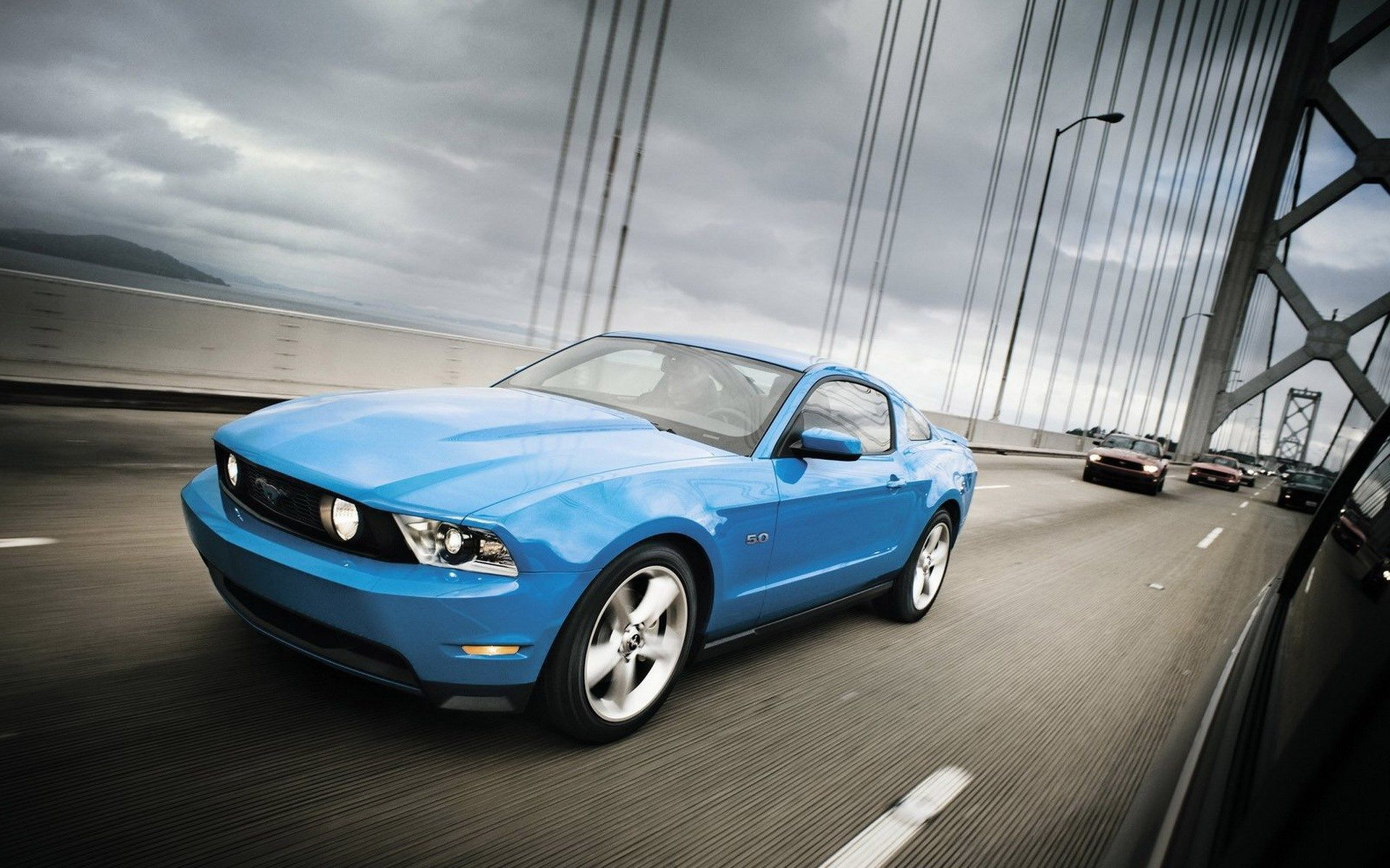 Free Download Ford Mustang Shelby Ford Mustang Gt Ford Mustang Ford Mustang Shelby