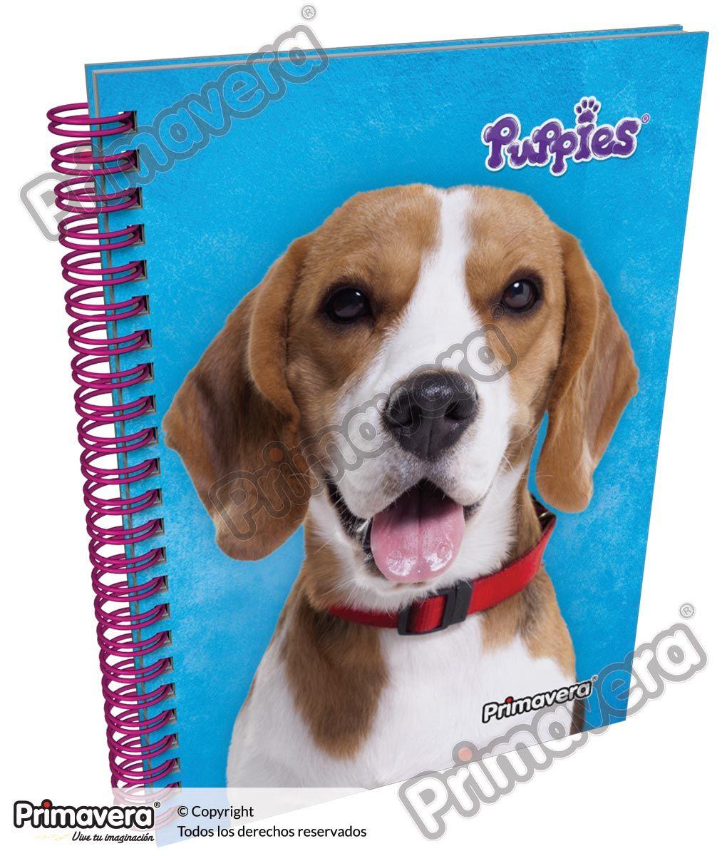 Cuaderno Pasta Dura Puppies http://escolar.papelesprimavera.com/product/cuaderno-pasta-dura-puppies-primavera-6/