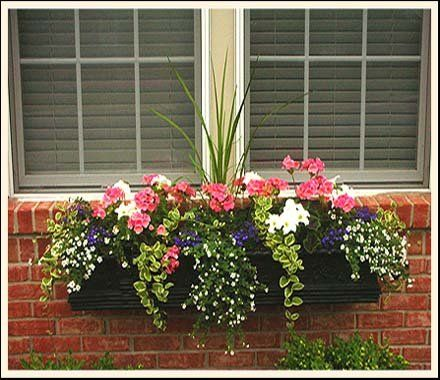 Pour un bel effet, cette jardinière a été garnie de fleurs retombantes  mauves et blanches