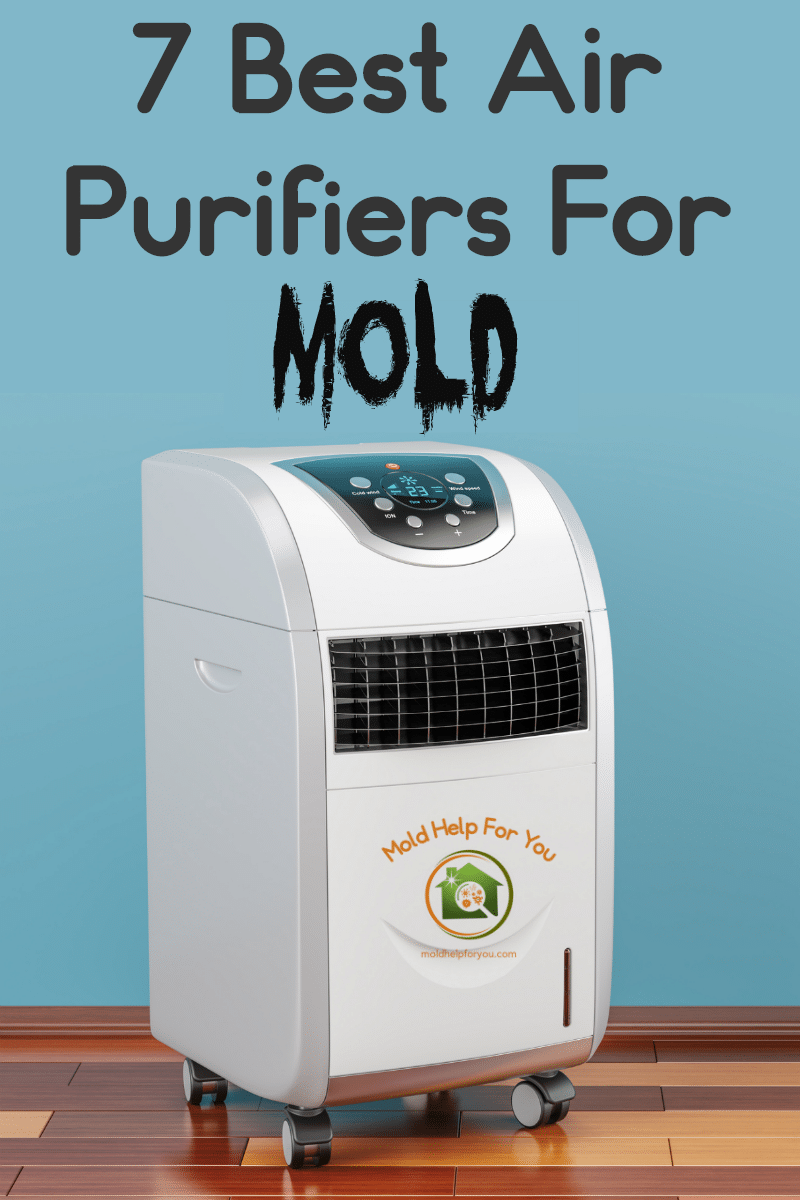 7 Best Air Purifiers For Mold Air purifier, Mold