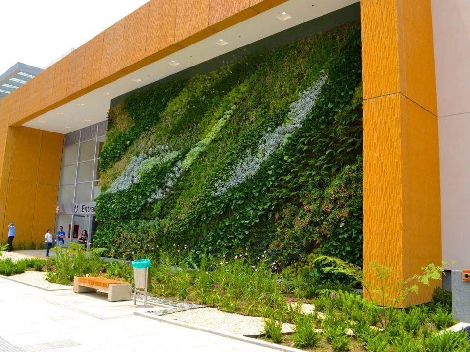 Como hacer muros verdes y jardines verticales taringa for Techos verdes y jardines verticales