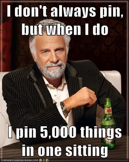 I don't always pin, but when I do I pin 5,000 things in one sitting!  LOL - so true!