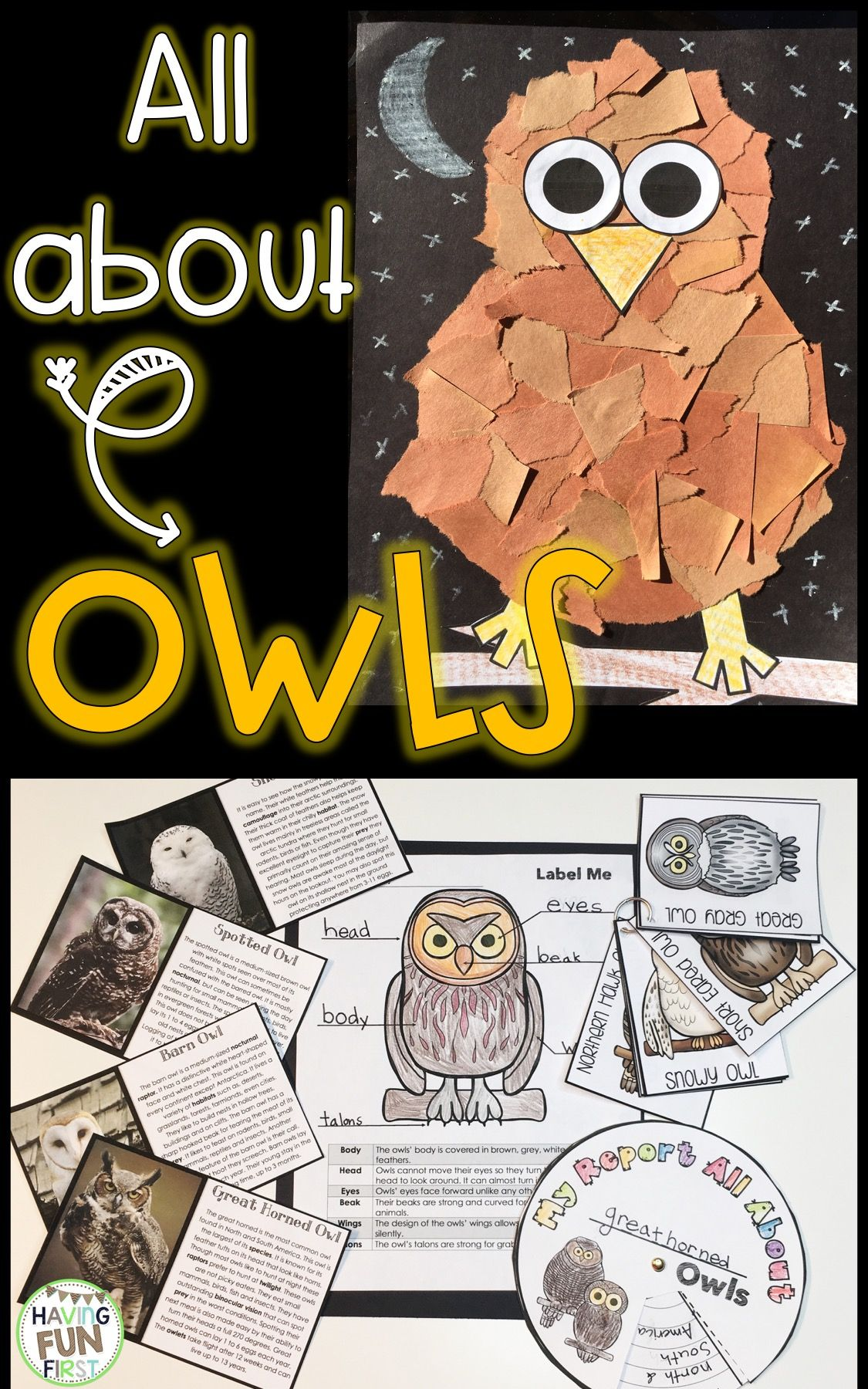 Learn all about owls through non-fiction passages with comprehension, writing, literacy and math centers, as well as a fun owl craft! Multiple subject areas covered help make this owl unit easy to implement. Just print and have fun as your students learn all about this nocturnal animal.