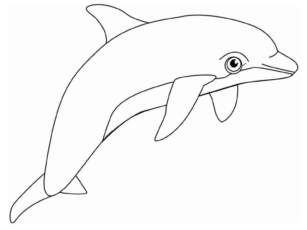 Dolphin Tale Print And Colour Sheets Dolphin Tale Dolphin Birthday Parties Dolphin Party