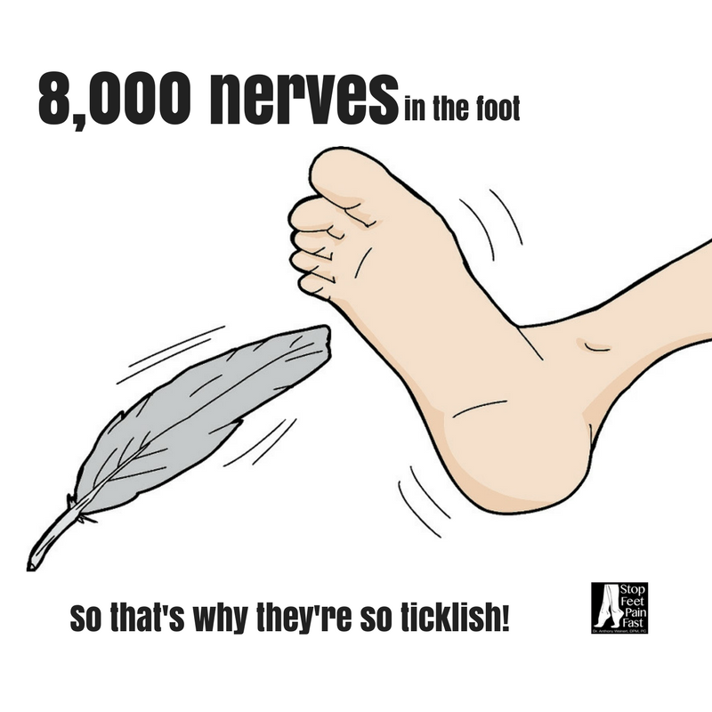 With 8000 Nerves In The Feet And Nerve Endings Close To The Surface