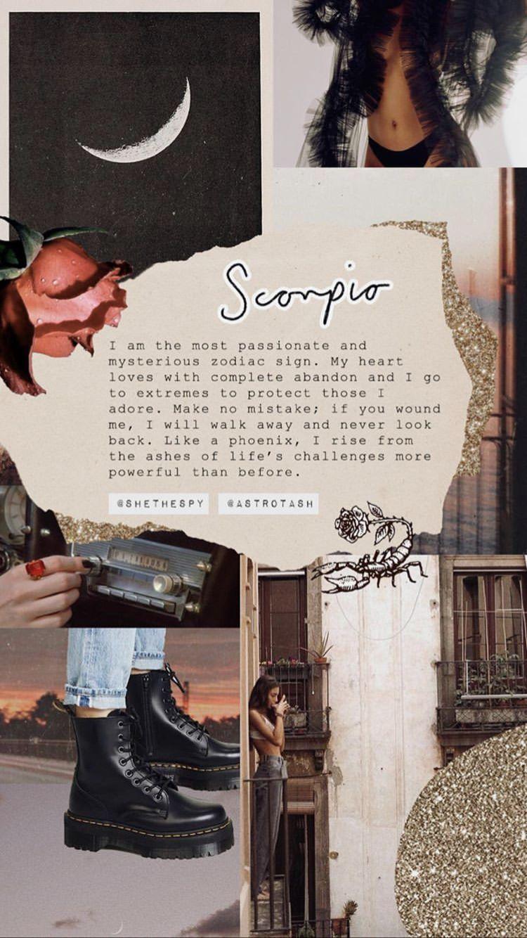 scorpio wallpaper astrology scorpio scorpio zodiac