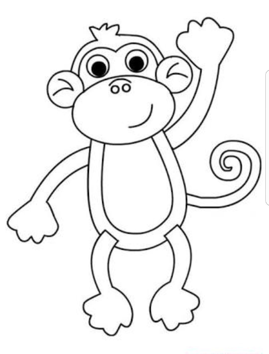 Tanima Panosu Boyama Sayfalari Maymunlar Kus Siluet