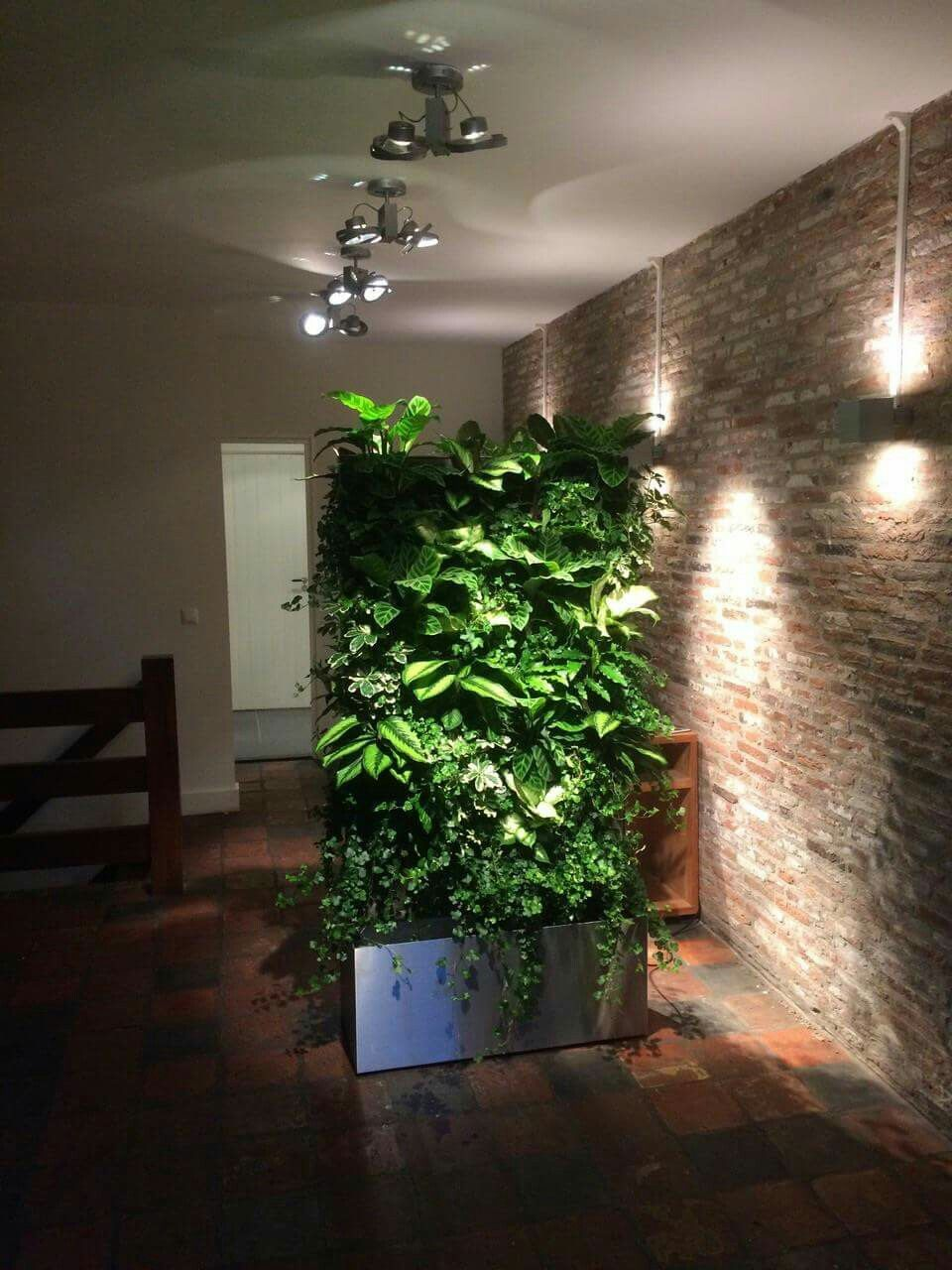Faszinierend Pflanzen Wand Referenz Von Vertiplant Grünewände Pflanzenwand Www.verti-plant.de