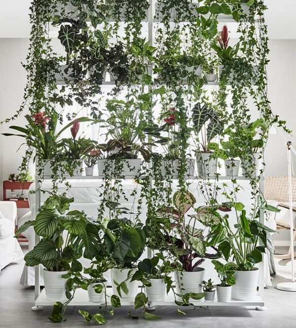 35 Indoor Garden Ideas To Green Your Home: 10 Decorating Tips From The New 2018 IKEA Catalogue
