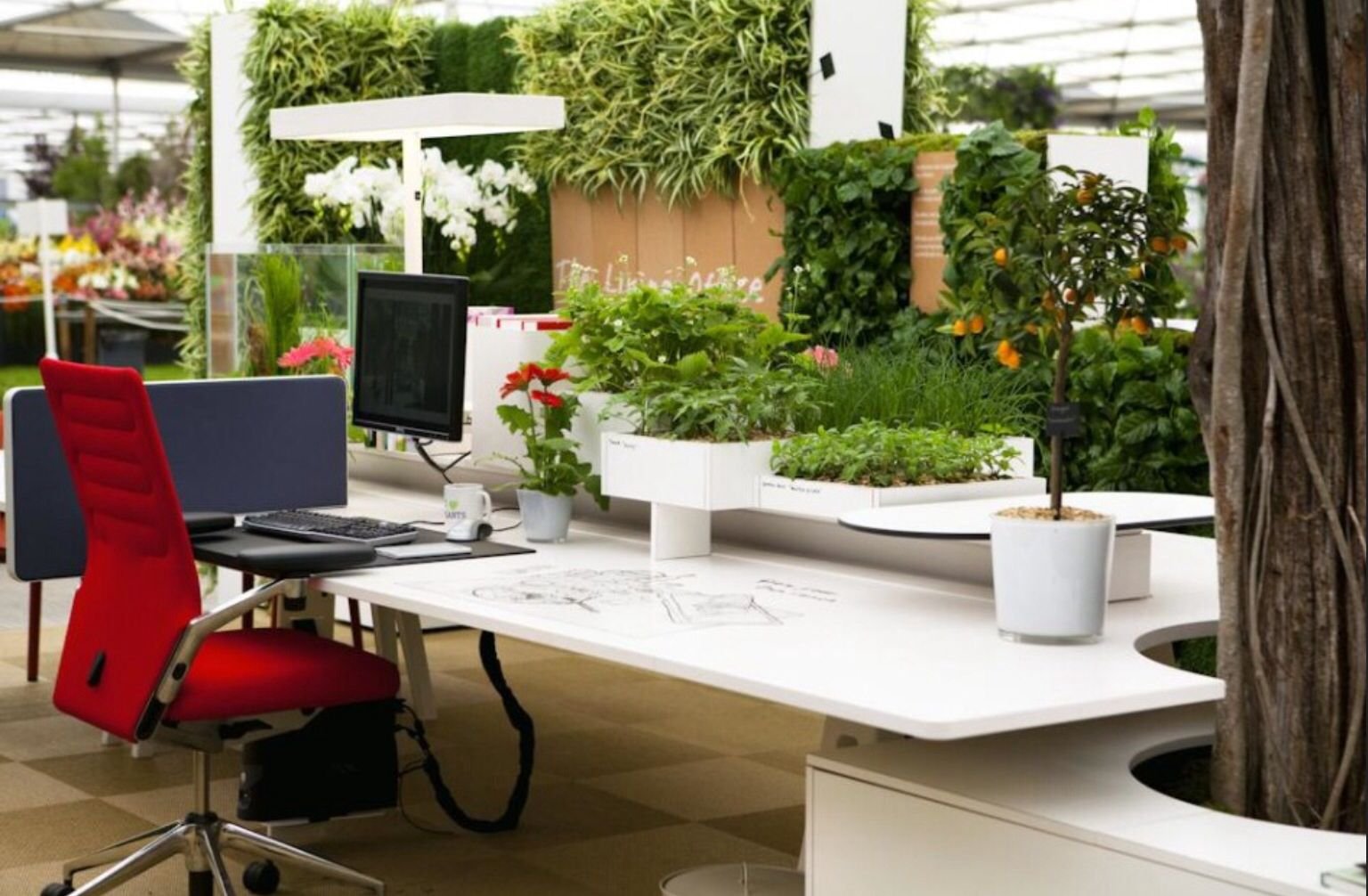 Office Garden | Office plants, Feng shui indoor plants ... on Modern Feng Shui Garden  id=35503