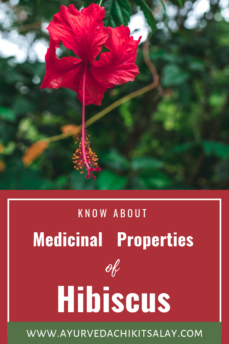 Medicinal Properties Of Hibiscus Flower In 2020 Hibiscus Plant Hibiscus Growing Hibiscus