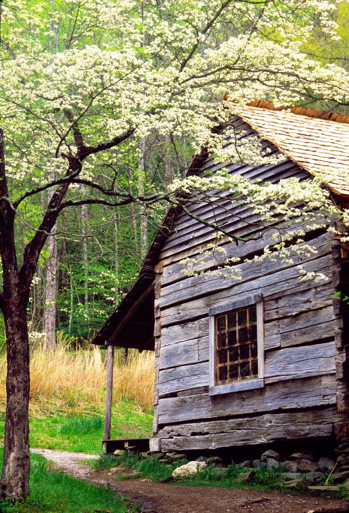 Love These Beautiful Historic Cabins In The Smokies Great Smoky