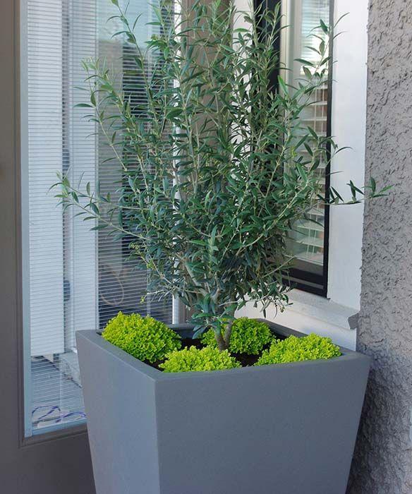 Aloe Designs - Vancouver Garden Design - Portfolio ...