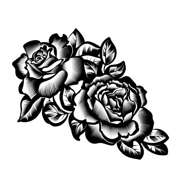 vector vintage black and white branch of roses in the style of... | Vintage flowers, Vector art ...