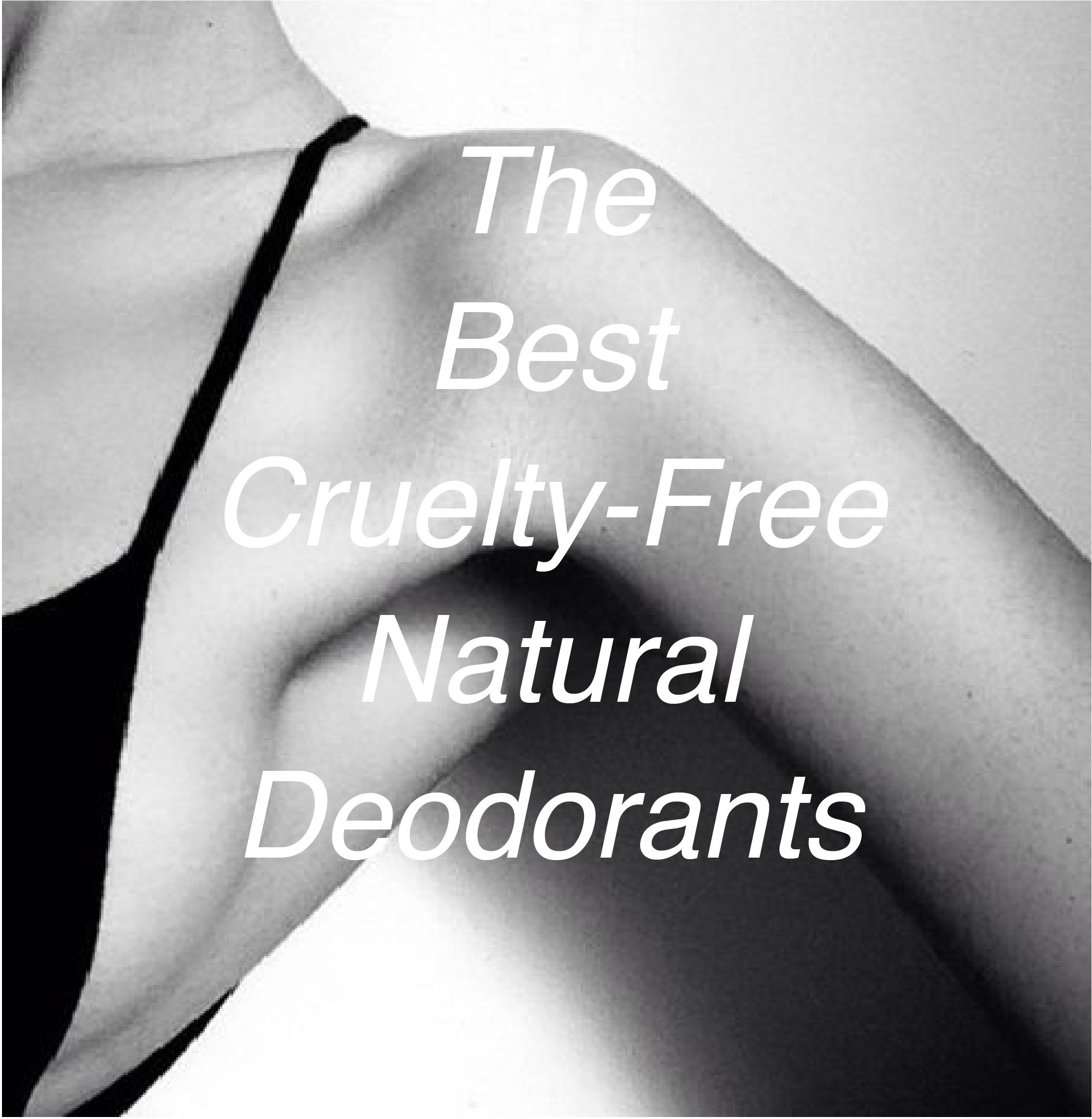 Pin on Best CrueltyFree Beauty