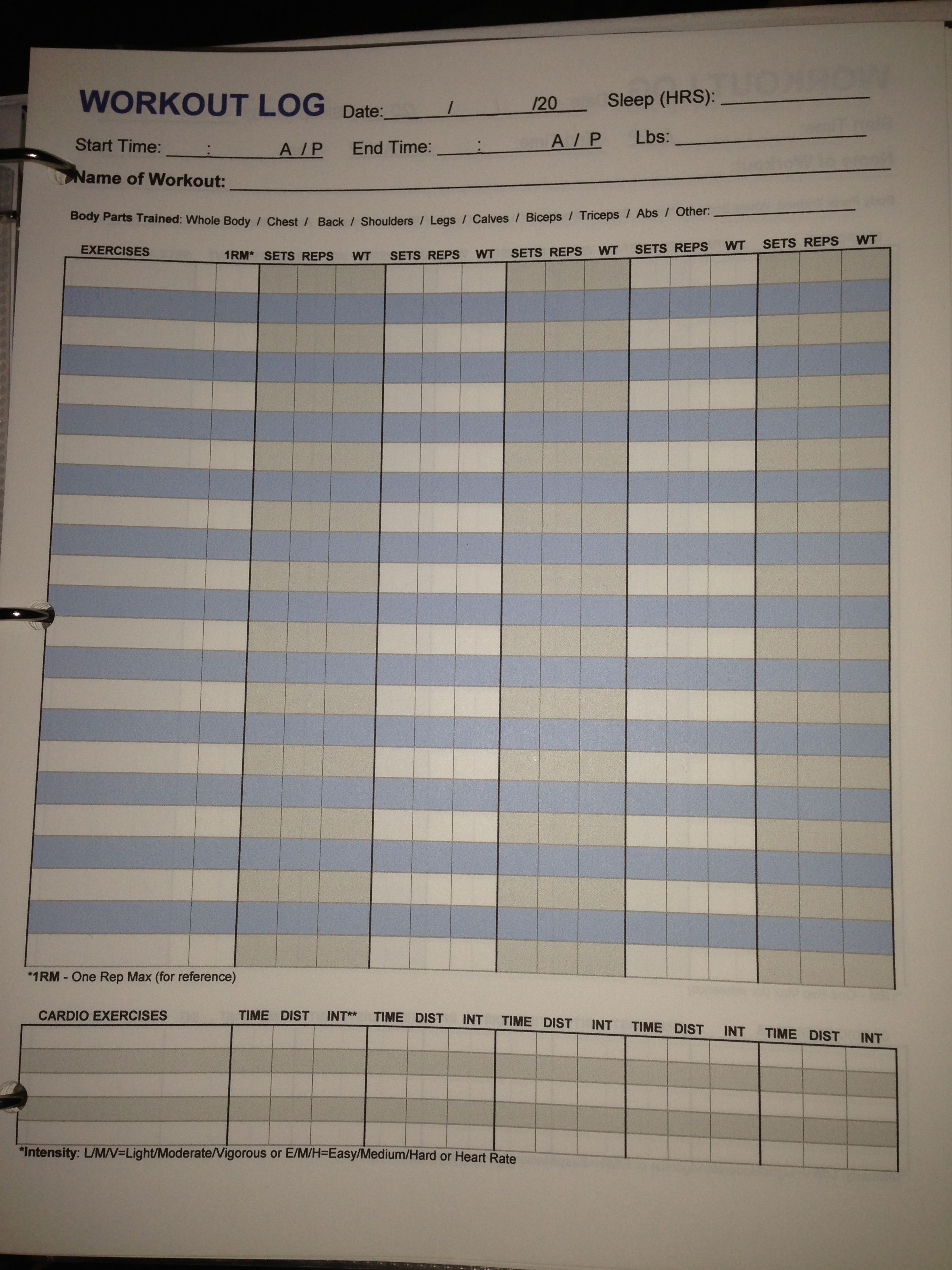 Workout Log Sample Worksheet Workout Log Workout Schedule