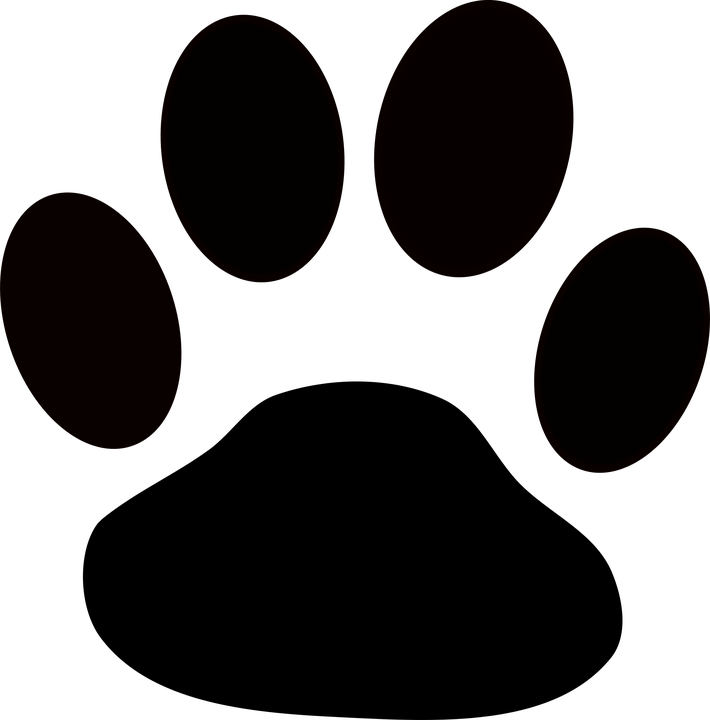 Fondos Huellas De Perro Buscar Con Google Huellas De Perro Fiestas Temáticas De Perros Huellas