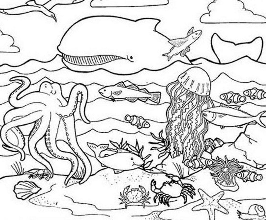Ocean Color Page Ocean Coloring Pages Ocean Coloring Pages Fish Coloring Page Animal Coloring Pages