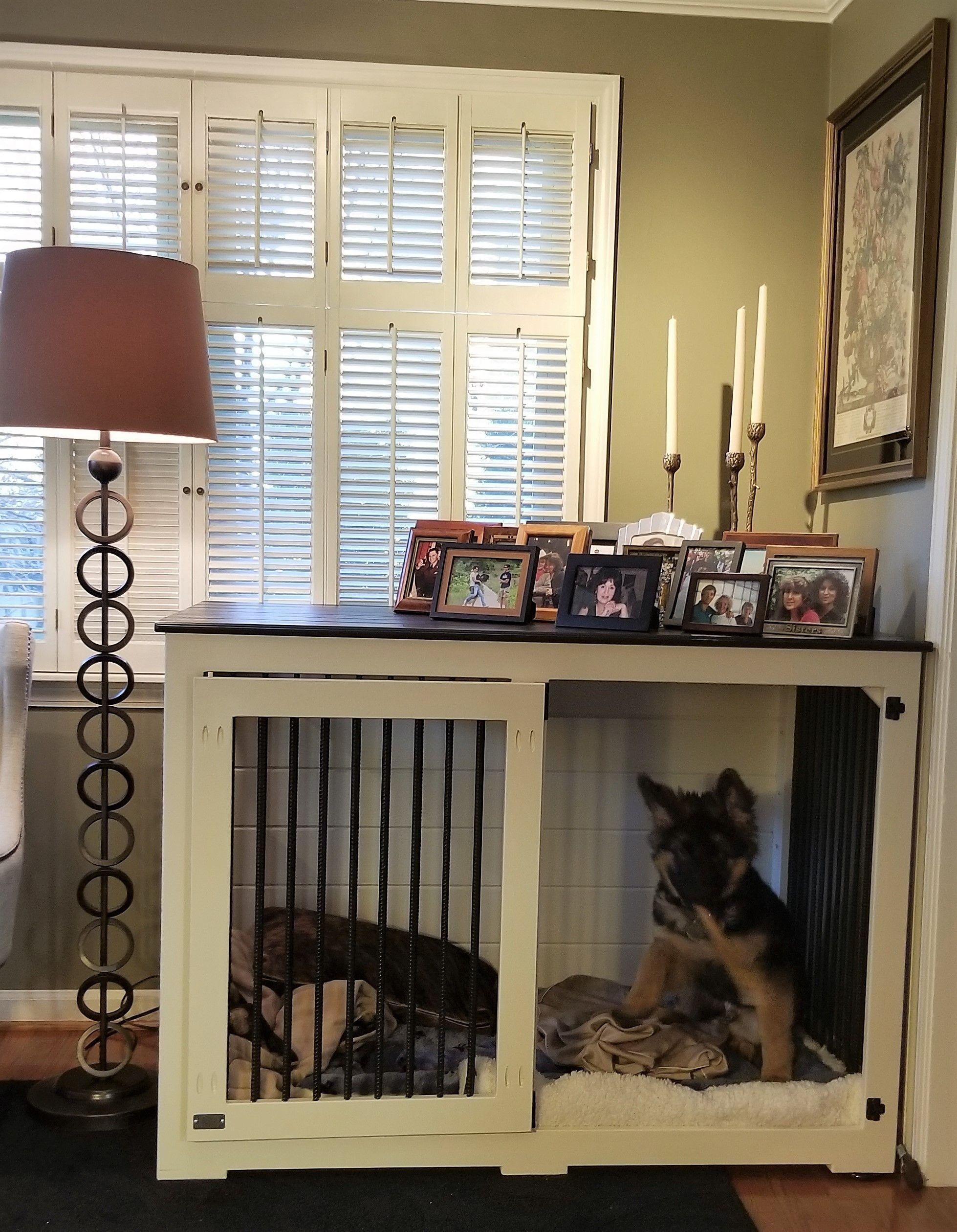 How To Build An Indoor Dog Kennel Building A Dog Kennel Diy Dog