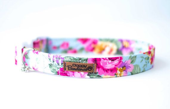 Dog Collar For Girls Girl Dog Collar With Roses Gorgeous Etsy