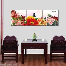 """Set of three Paint by Number kit with frame 20*20"""" DIY Painting Peony JC17003"""