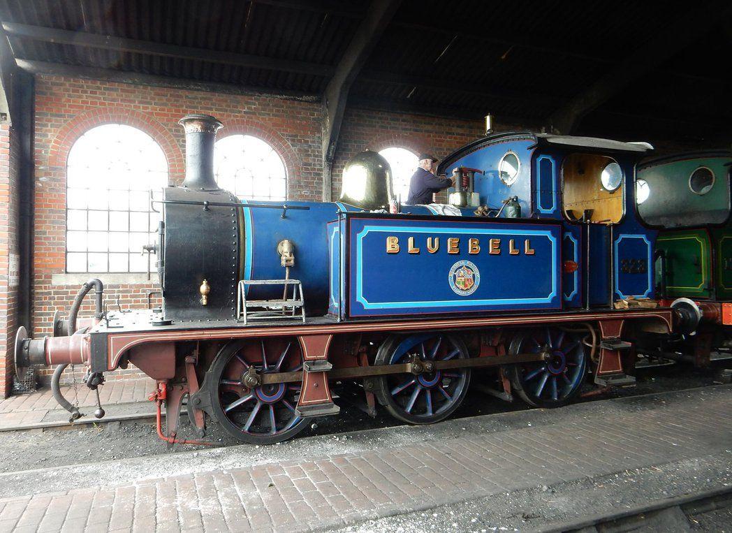 Bluebell by rlkitterman on DeviantArt