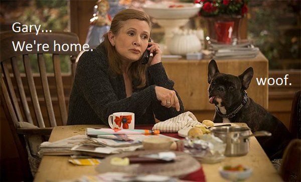 Carrie Fisher's Dog (@Gary_TheDog) | Twitter