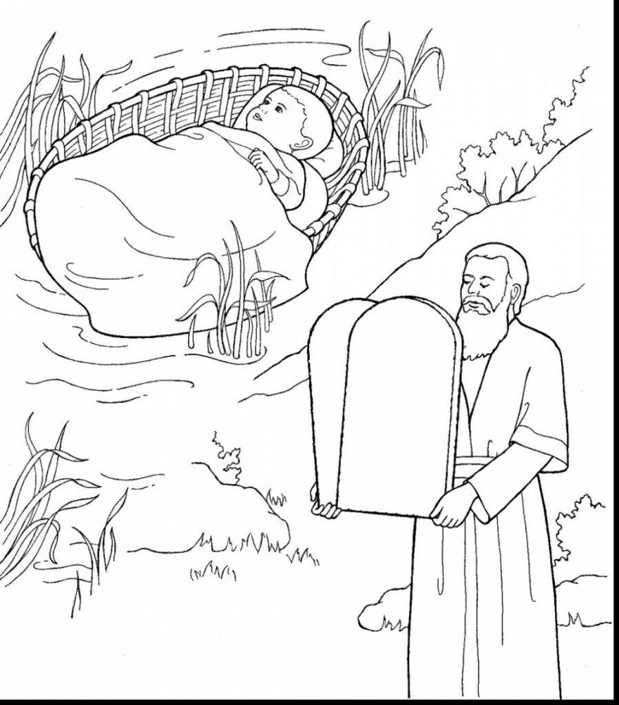 Image result for ten commandments color sheets | Bible ...