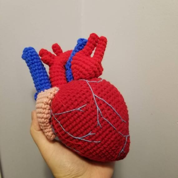 Realistic Actual sized Anatomical Heart | Crocheted ...