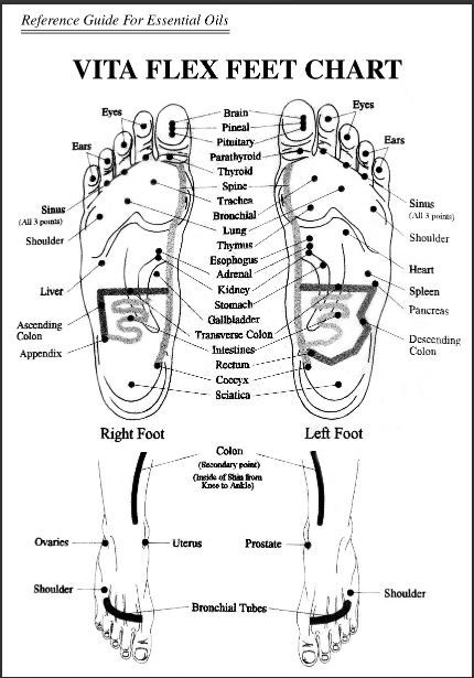 Vita flex foot chart also essential oils pinterest rh