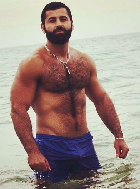 muscle pakistani Hairy chest indian