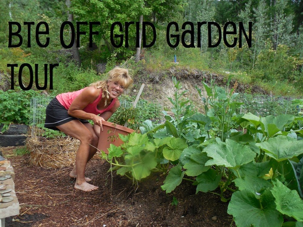 Off Grid Garden Tour Back To Eden Method Modified Success How To Homestead On A Budget