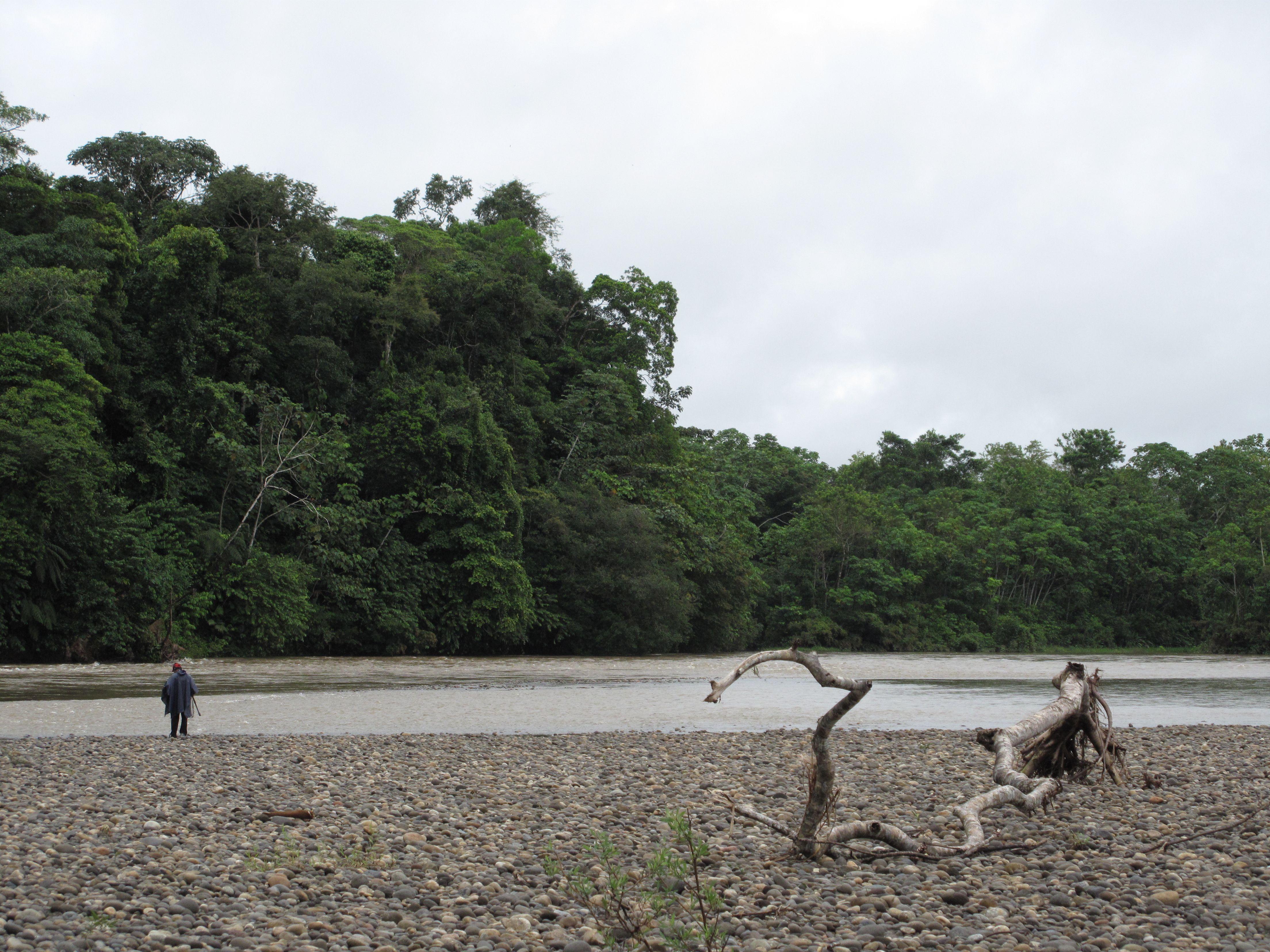 Proyecto WAI O IRI en el Putumayo