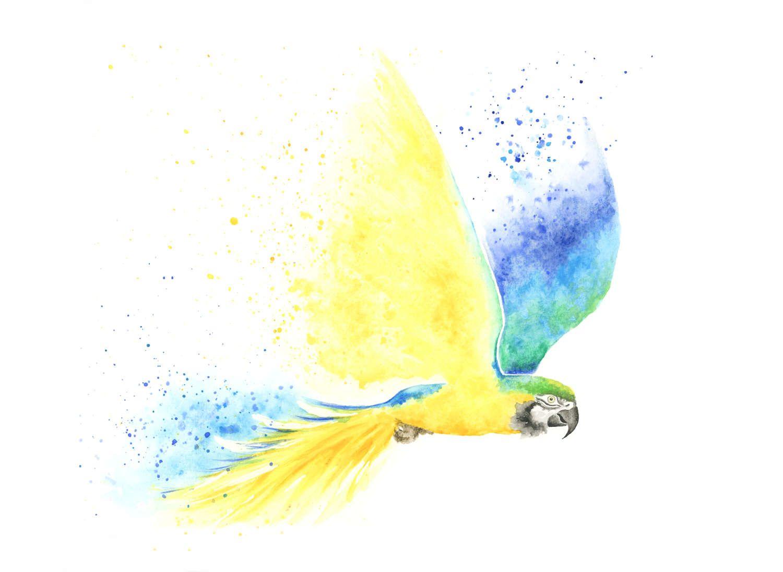 Parrot print, tropical print, bird print, parrot painting, bird ...