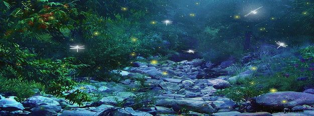 Dance Of The Dragon & Fireflies Facebook Cover | Beautiful