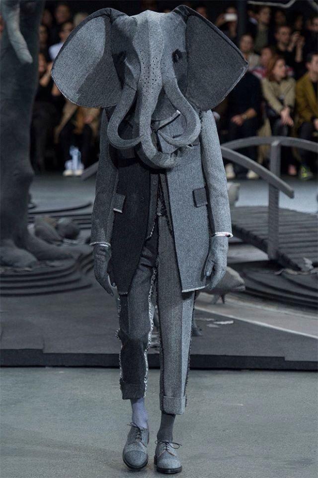 Elefant | Fashion Oddities!!!?><+<> | Weird fashion, Fashion