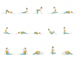 ashtanga yoga and its features explained  gentle yoga