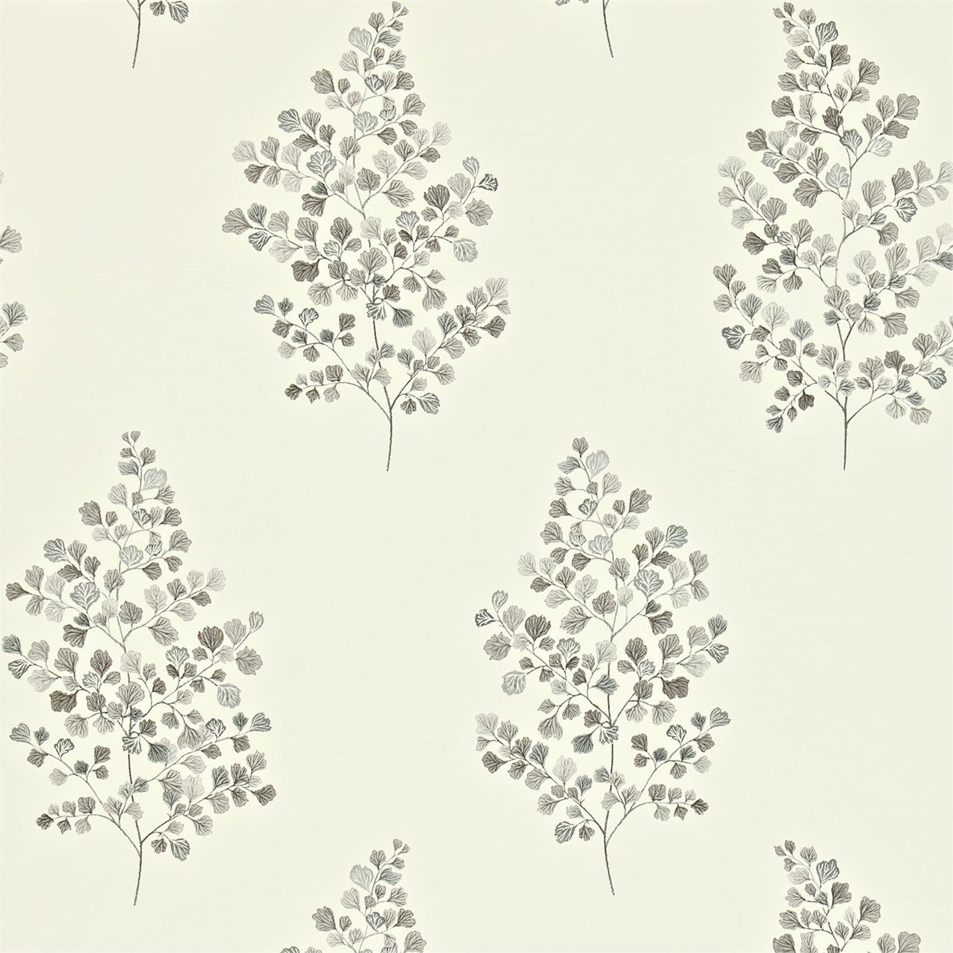 Sanderson - Traditional to contemporary, high quality designer fabrics and wallpapers | Products | British/UK Fabric and Wallpapers | Angel Ferns (DMAY211997) | Maycott Wallpapers