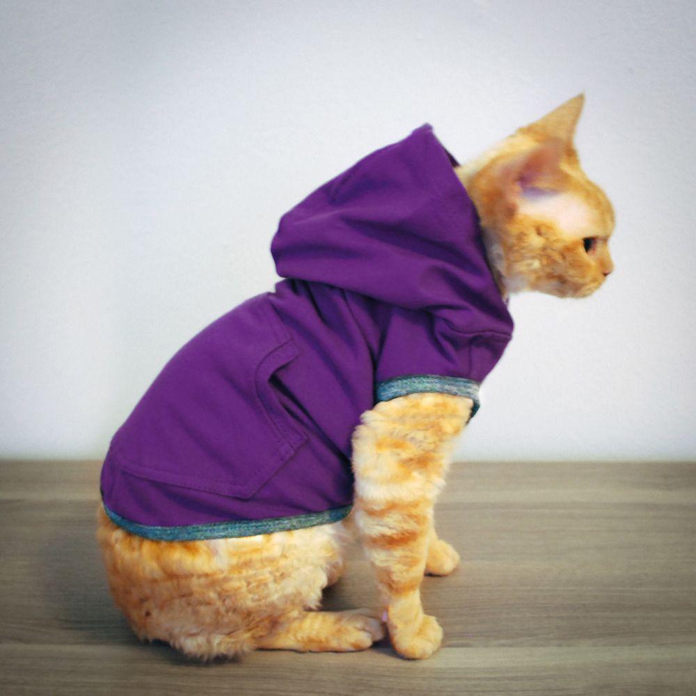 Cat Clothes and Accessories Cat toure Luxury Cat Boutique