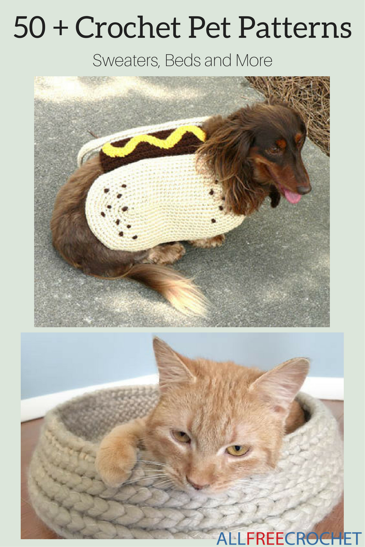 Dress your fur babies in style by creating your own unique styles ...