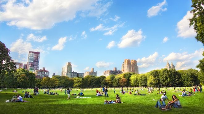 The 25 Best Summer Pictures Of New York City Park Hyde Park London Spring In New York