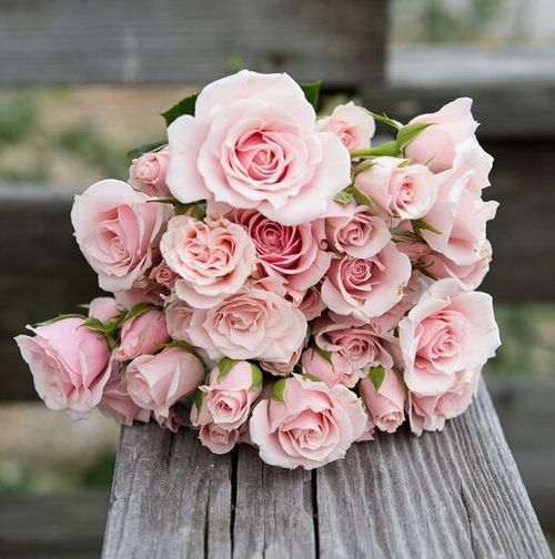 Mazzo Di Fiori The West.Roses In This Shade Go Beautifully With Natural Wood Colors