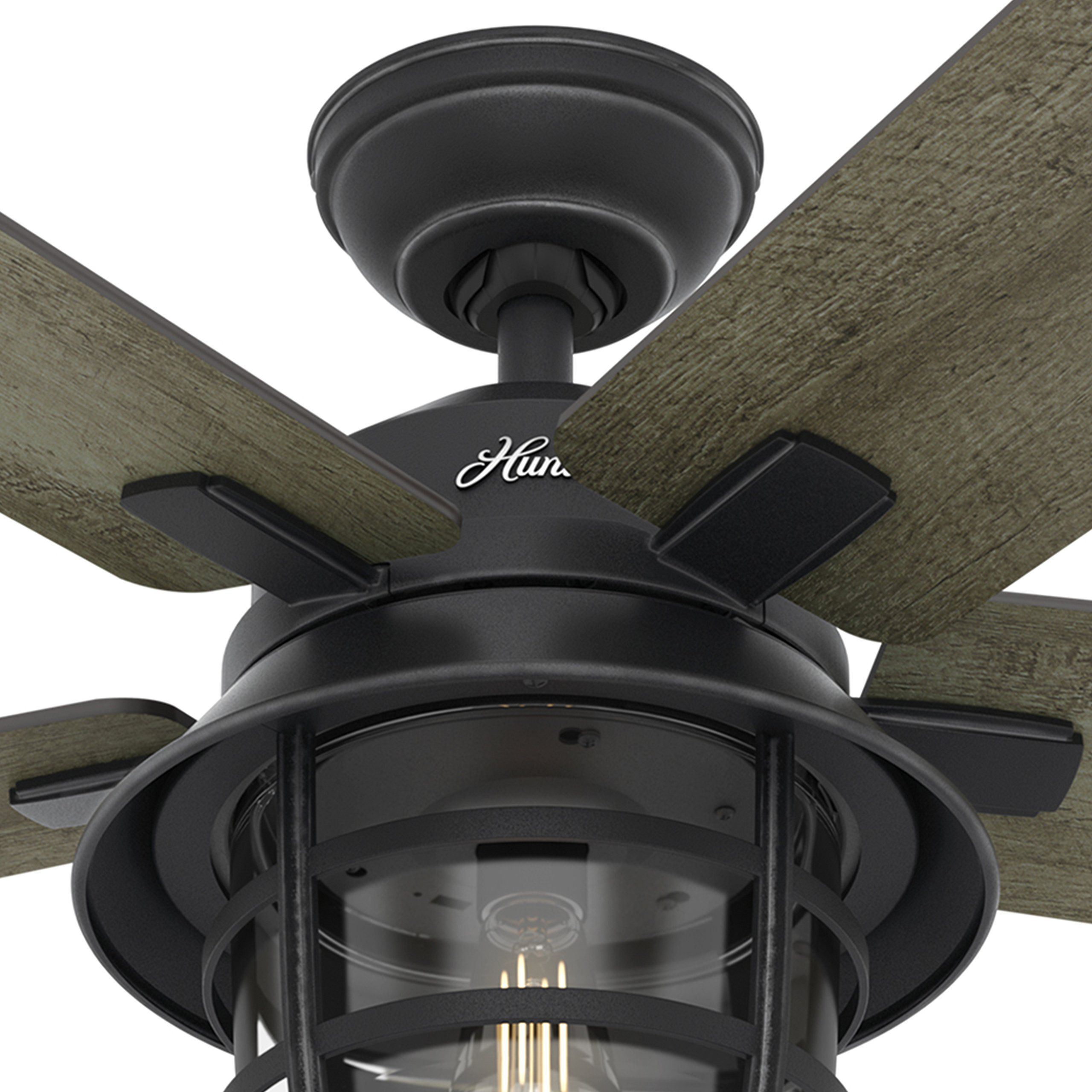 Hunter Fan 54 Weathered Zinc Outdoor Ceiling Fan With A Clear Glass