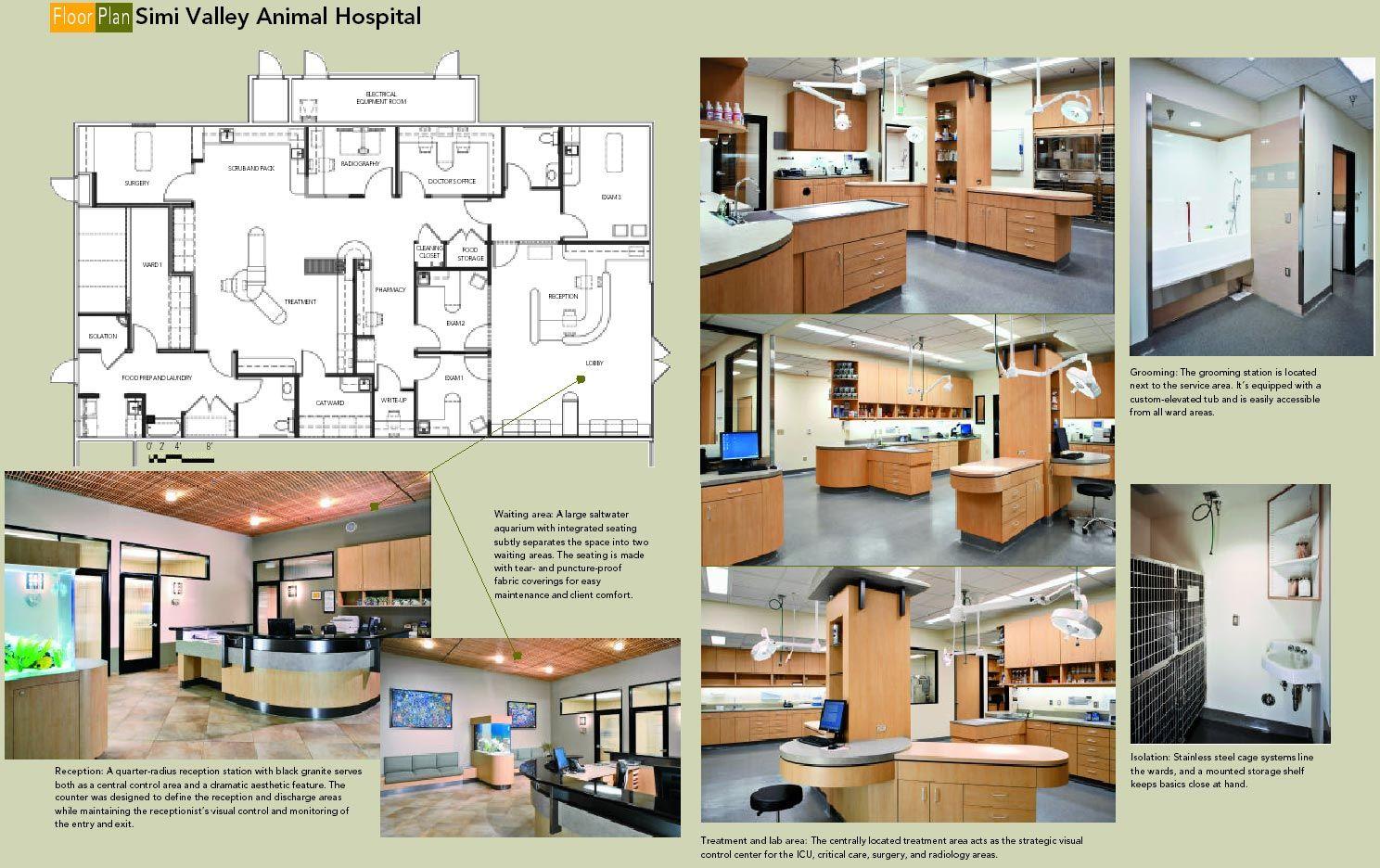 13+ East petaluma animal hospital ideas in 2021