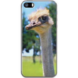 What? By BruceStanfieldArtist for  Apple  iPhone 5/5s  #Ostrich #bird #stare